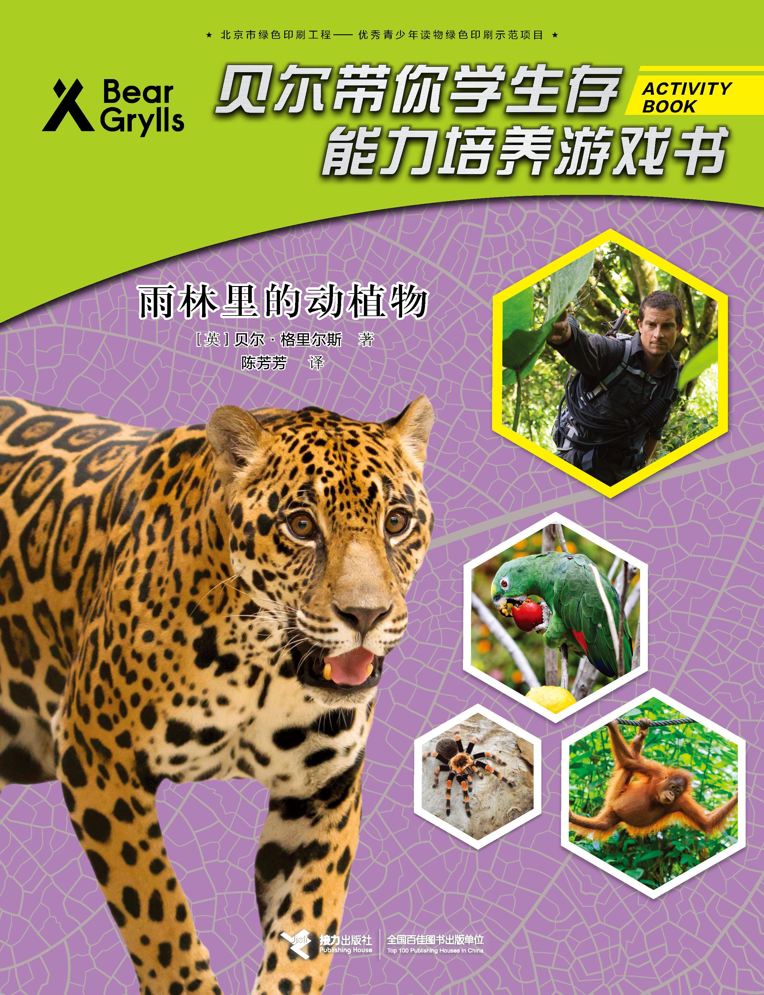 雨林里的动植物