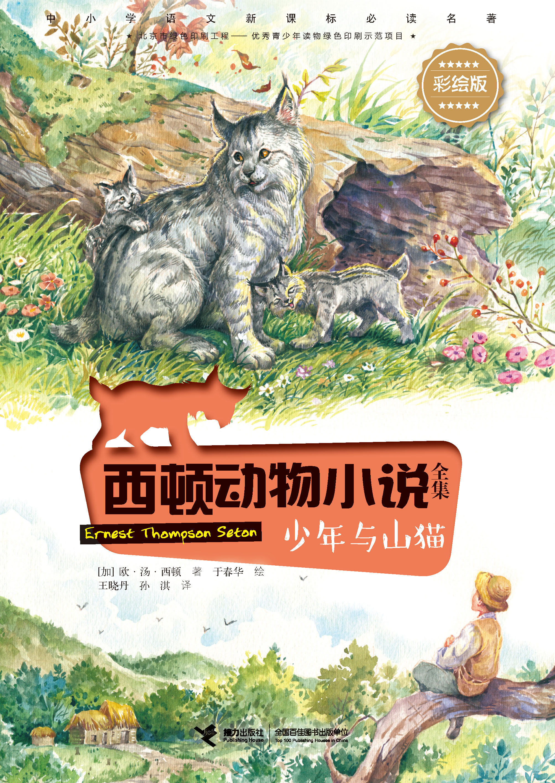 少年与山猫