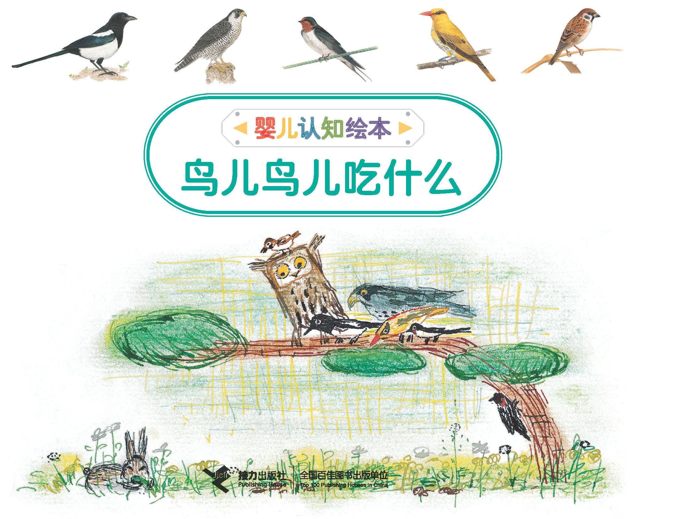 鸟儿鸟儿吃什么