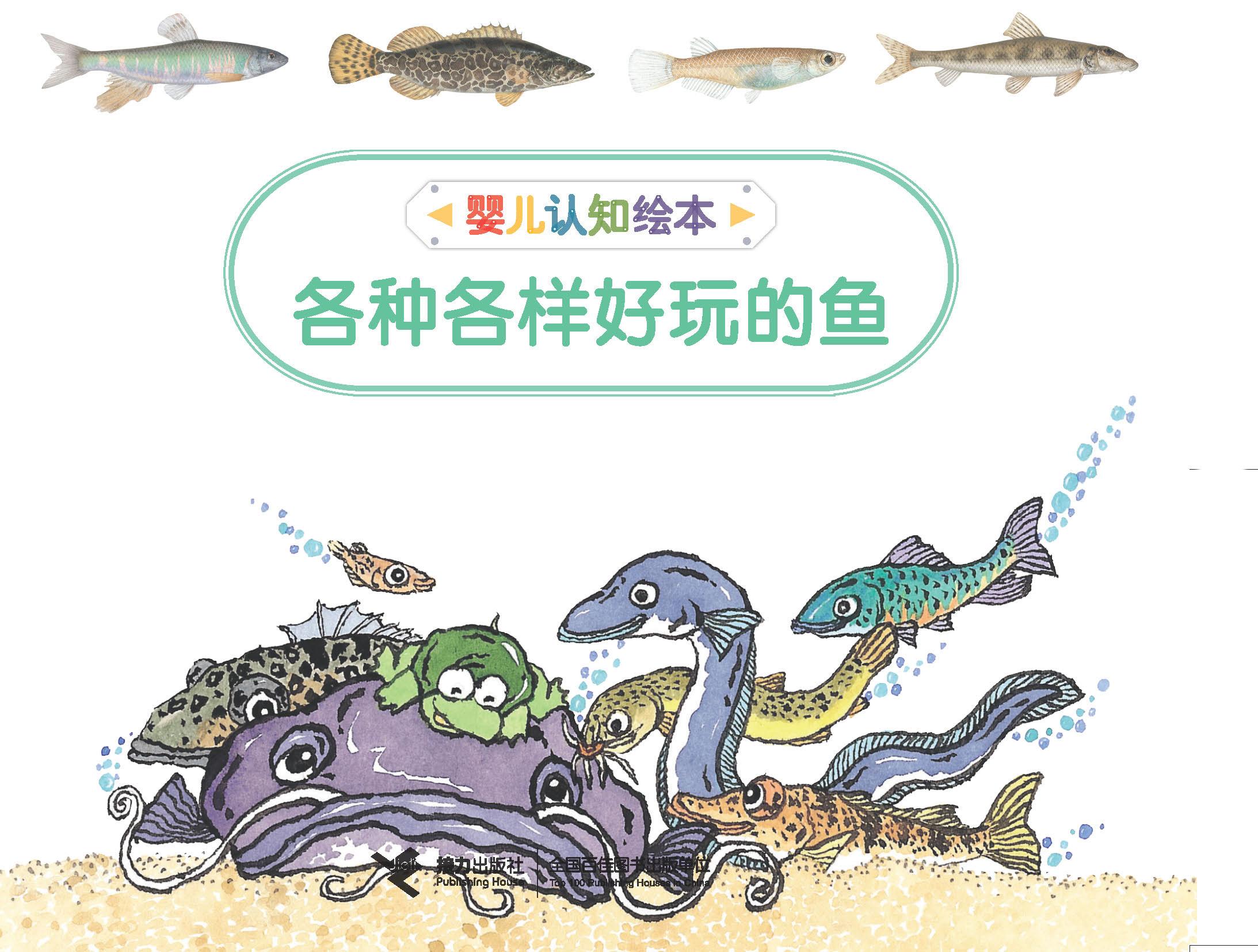 婴儿认知绘本:各种各样好玩的鱼